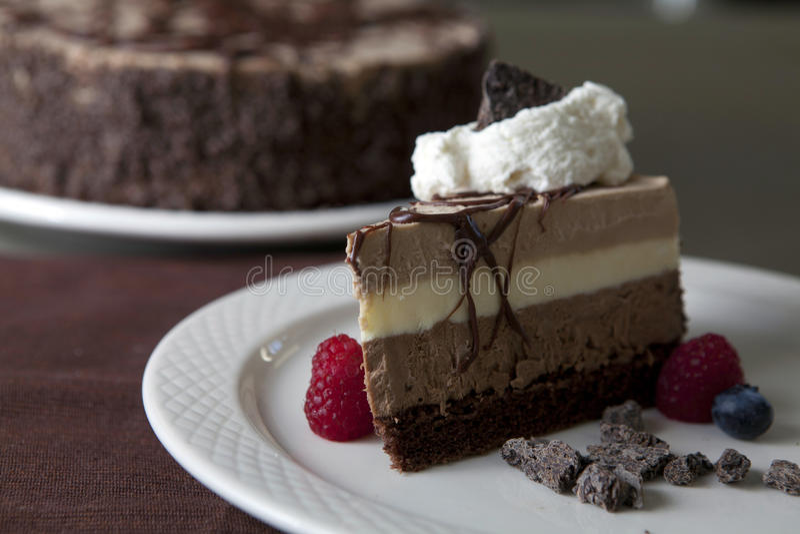 Chocolate Bavarois royalty free stock images