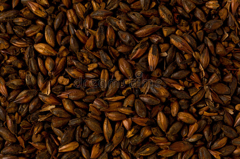 Chocolate Brewers Malt royalty free stock photo