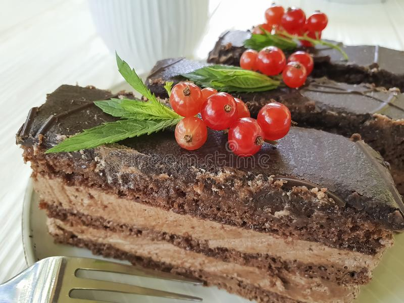 Chocolate brown cake, red currant, mint biscuit tasty lunch cutting baked dish pastry white wooden. Chocolate cake brown red currant mint plate on white wooden royalty free stock photo