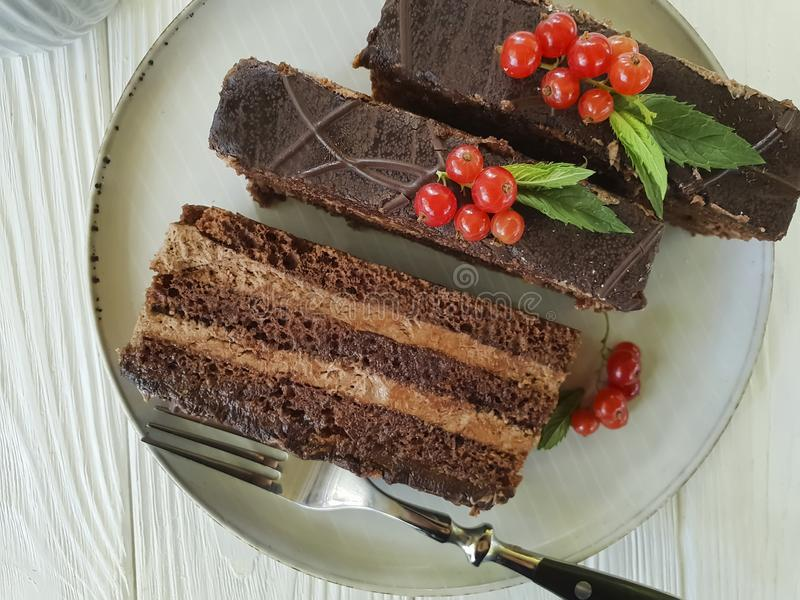 Chocolate brown cake, red currant, mint homemade tasty lunch cutting baked dish seasoning pastry plate white wooden. Chocolate cake brown red currant mint plate royalty free stock photography