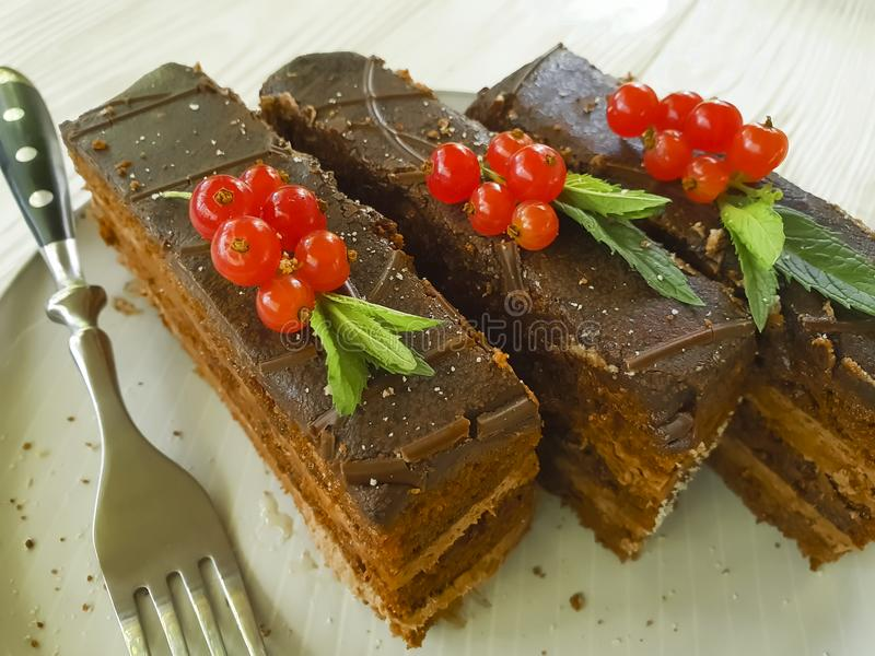Chocolate brown cake, red currant, mint nutrition composition biscuit tasty lunch cutting baked dish pastry white wooden. Chocolate cake brown red currant mint stock photos