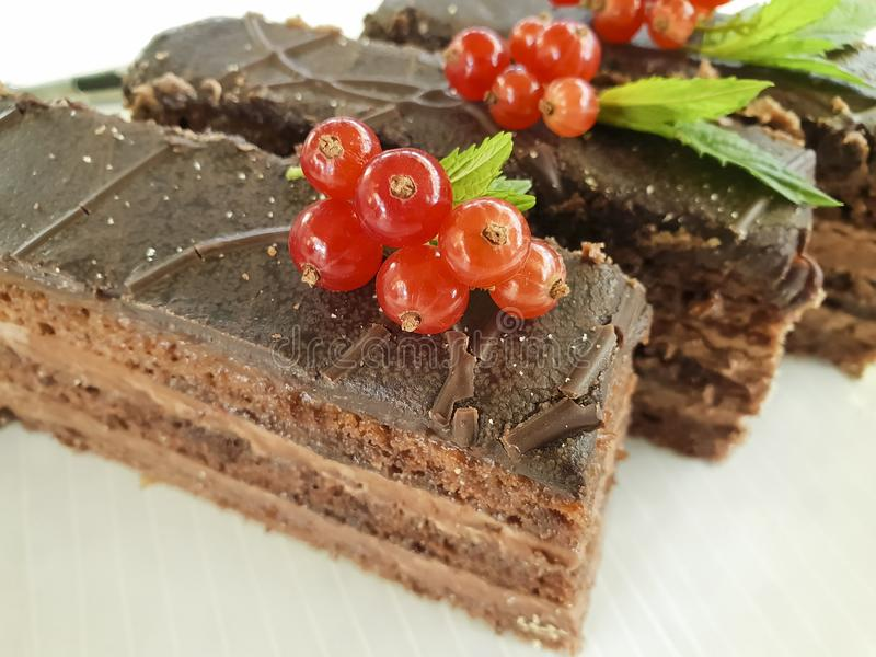 Chocolate brown cake, red currant, mint cutting baked dish seasoning pastry plate on white wooden. Chocolate cake brown red currant mint plate dish on white royalty free stock photo