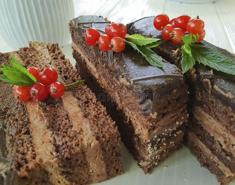 Chocolate brown cake, red currant, mint food tasty lunch cutting baked dish pastry white wooden. Chocolate cake brown red currant mint plate on white wooden royalty free stock photos