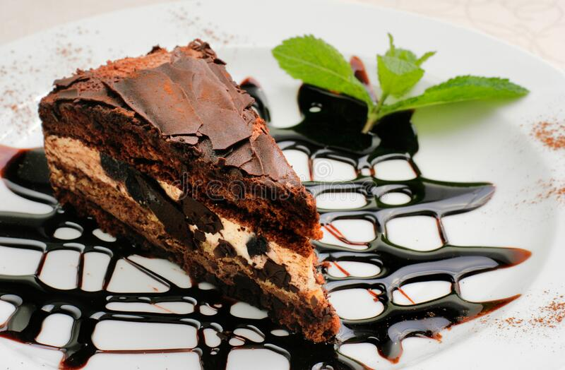 Chocolate cake with a brown topping and sprig of mint royalty free stock photo