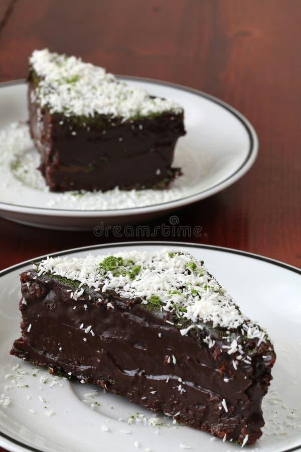 Chocolate cake with coconut and green tea powder. Chocolate cake garnished with coconut and Matcha green tea powder stock photo