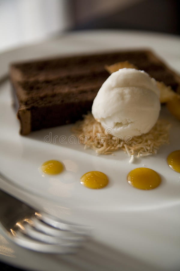 Chocolate Cake and Coconut Ice Cream stock photos