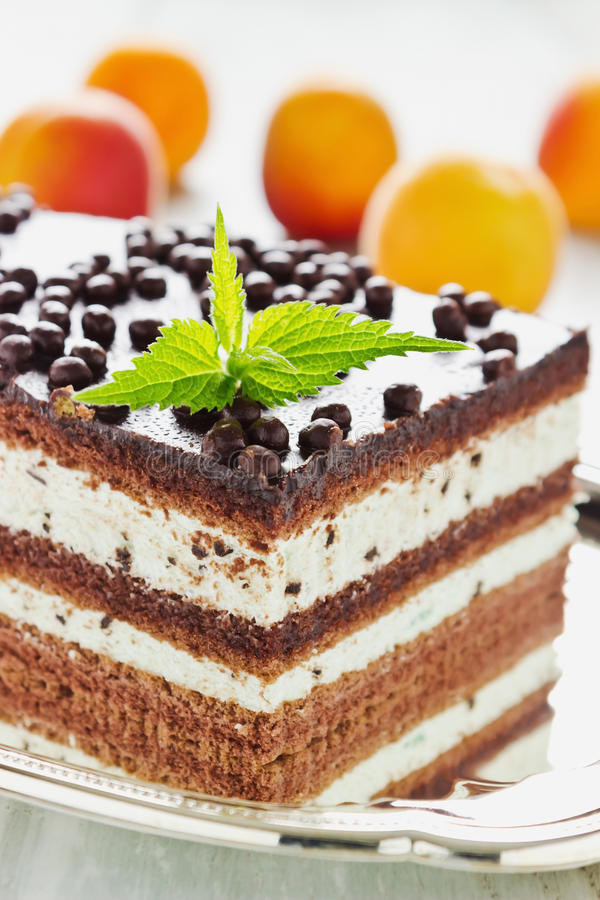 Download Chocolate cake with cream stock image. Image of pastry - 42035171