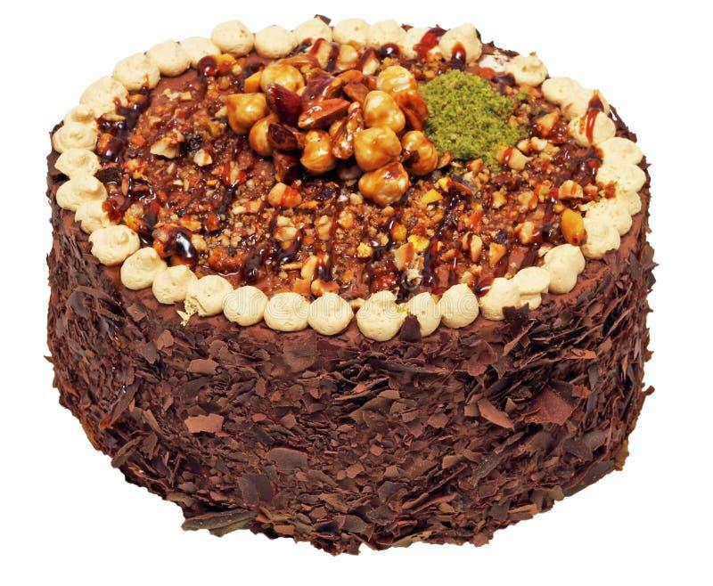 Chocolate cake with hazelnuts royalty free stock photos
