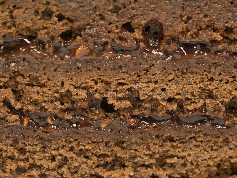 Download Chocolate Cake With Layers Stock Image - Image: 17940991