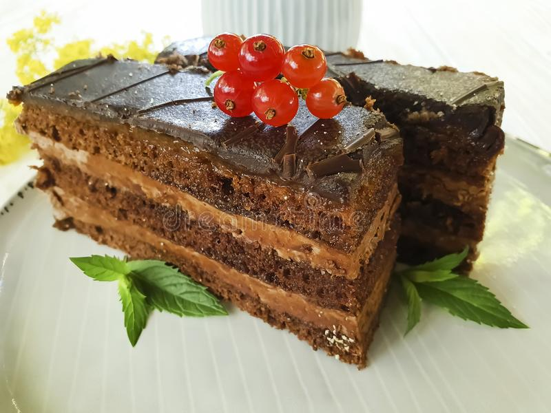 Chocolate cake, red currant, mint, flower homemade flavor portion creamy biscuit flavor summer plate on white wooden. Chocolate cake, red currant, mint, flower royalty free stock photos