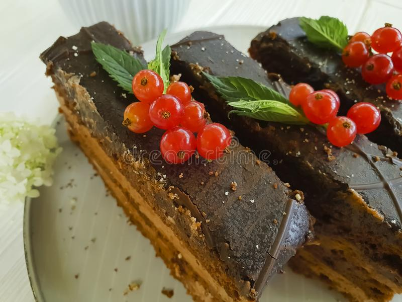 Chocolate cake, red currant, mint, flower flavor summer plate on white wooden. Chocolate cake, red currant, mint, flower plate on white wooden nutrition summer royalty free stock photo