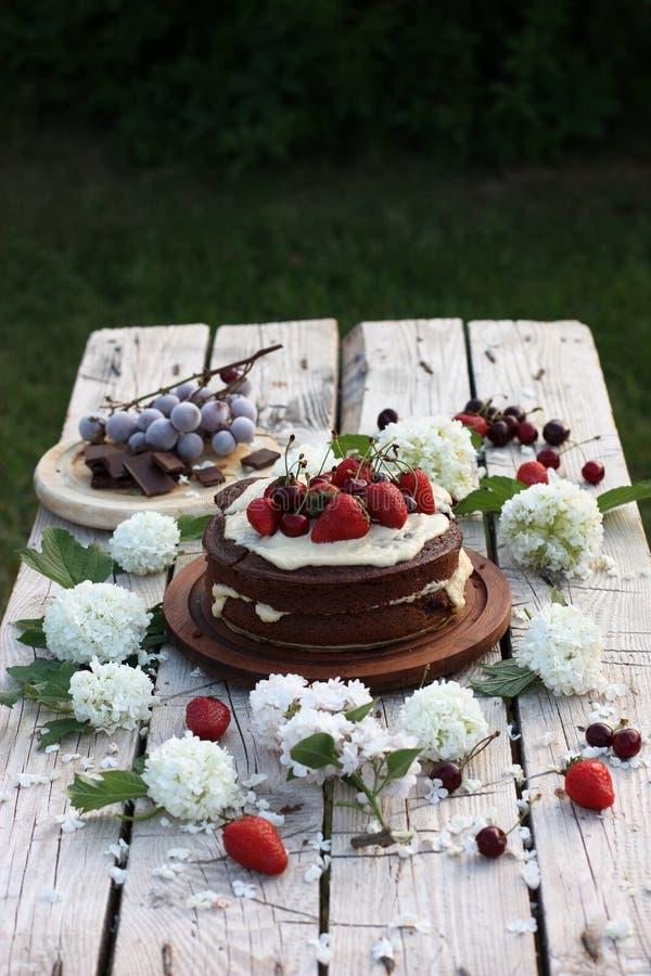 Chocolate cake with summer berries stock photo