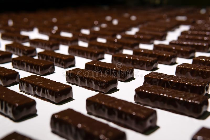 Chocolate candies on the conveyor of a confectionery factory close-up. Chocolates just poured with liquid chocolate on a conveyor belt of a confectionery factory stock image