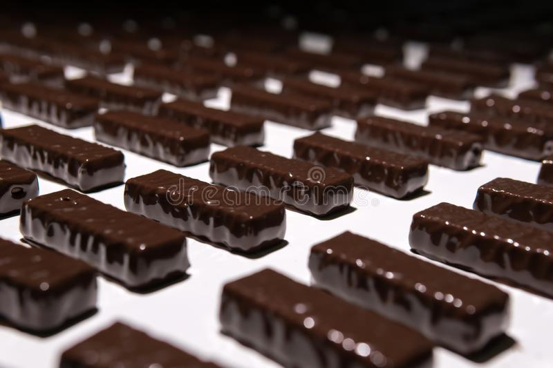 Chocolate candies on the conveyor of a confectionery factory close-up. Chocolates just poured with liquid chocolate on a conveyor belt of a confectionery factory royalty free stock photography
