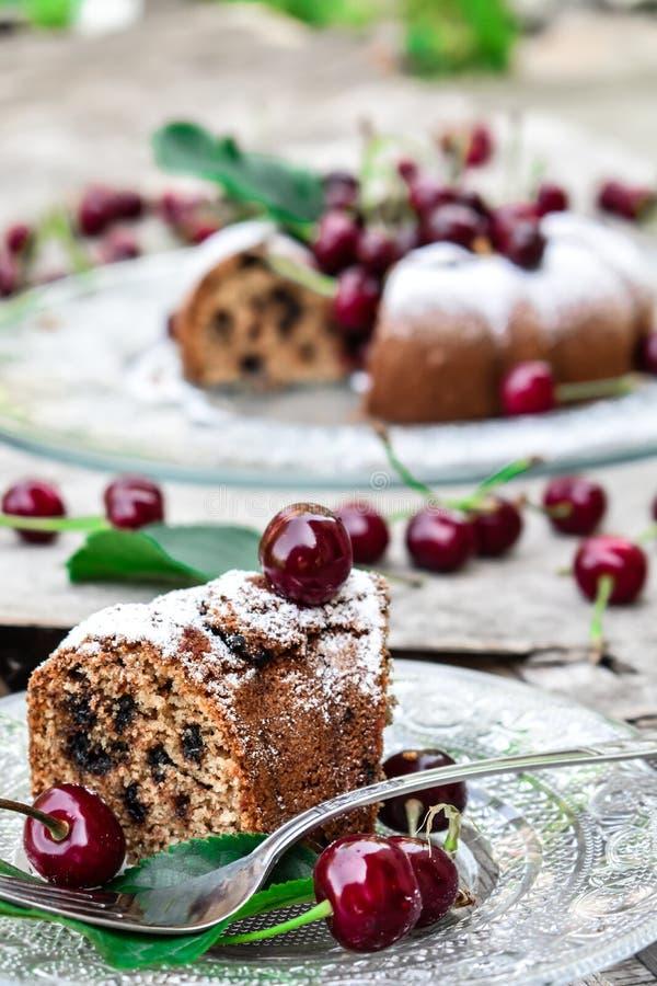 Chocolate and cherry kouglof slice royalty free stock photos