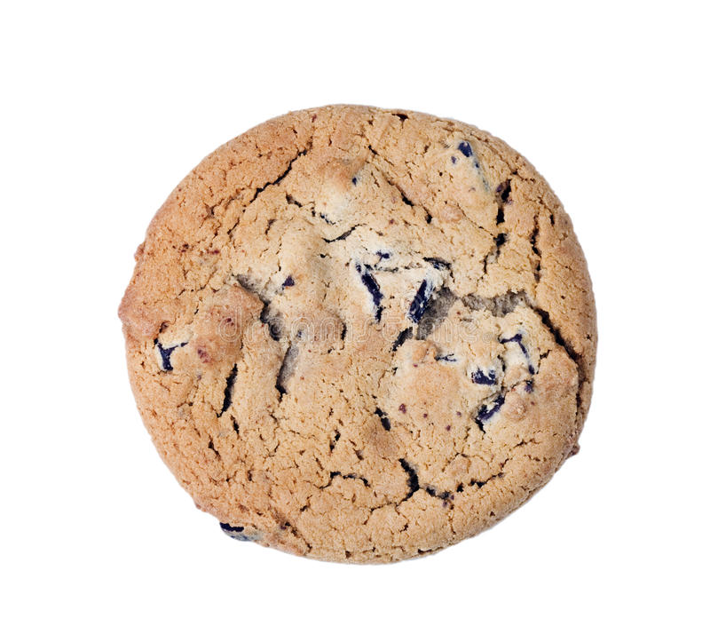 Chocolate Chip Cookie. A single chocolate chip cookie isolated on white background royalty free stock images