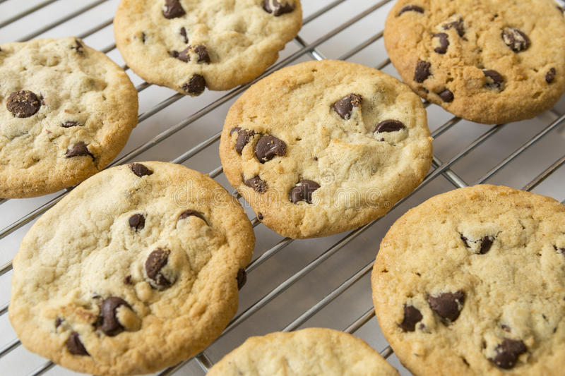 Chocolate Chip cookie and Cooling rack. In rows stock photography