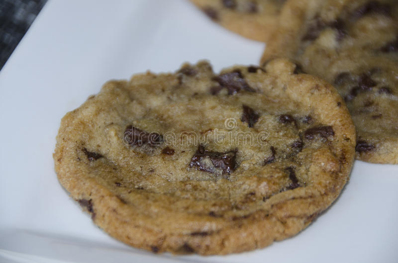 Chocolate chip cookie. This is a warm chocolate chip cookie fresh from an oven stock photo