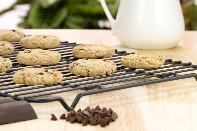 Download Chocolate chip cookies stock photo. Image of dessert - 19413550