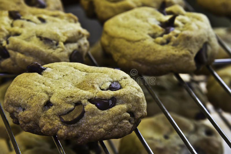 Chocolate Chip Cookies. Fresh baked chocolate chip cookies cooling on stacked wire racks stock photos