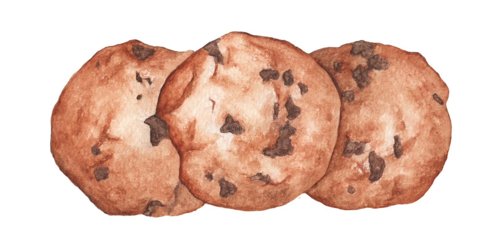 Chocolate chip cookies. Hand drawn watercolor food illustration. royalty free illustration