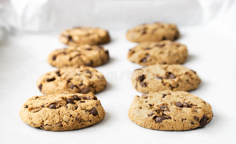 Chocolate chip cookies. Homemade chocolate chip cookies on baking paper royalty free stock photos