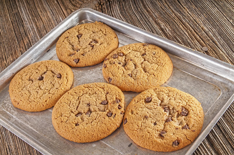 Chocolate chip cookies homemaid,baked stock images