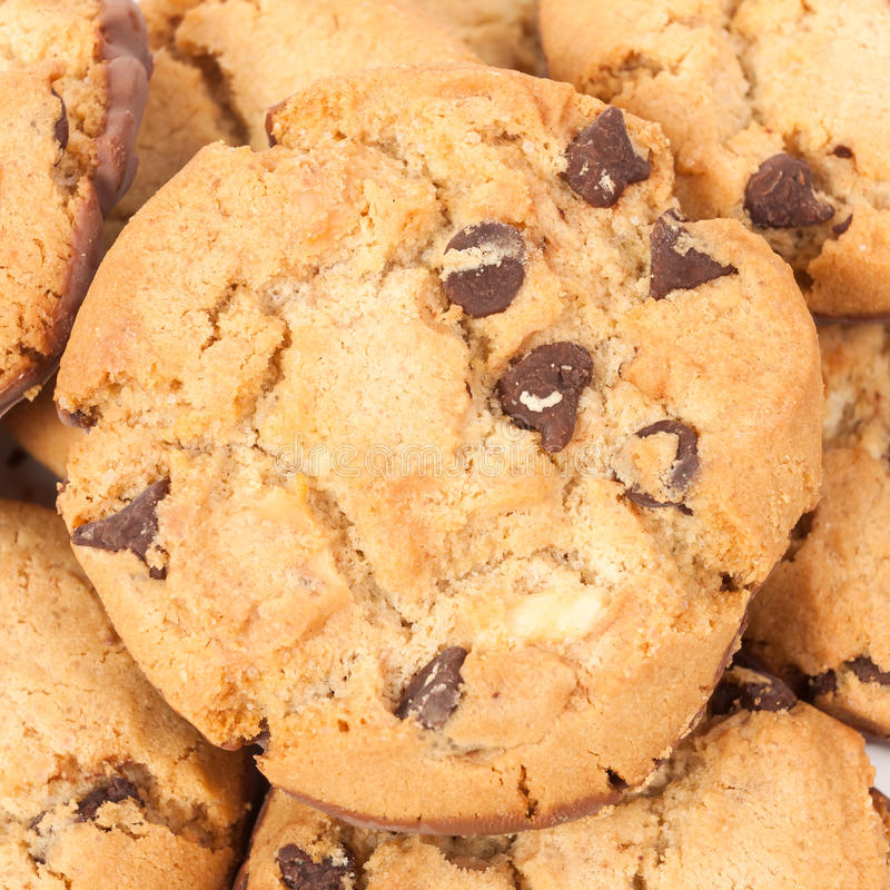 Free Chocolate Chip Cookies Isolated On White Stock Photography - 32842712