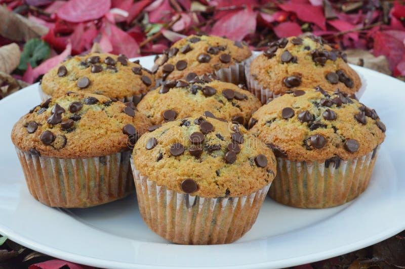 Chocolate Chip Muffins imagen de archivo