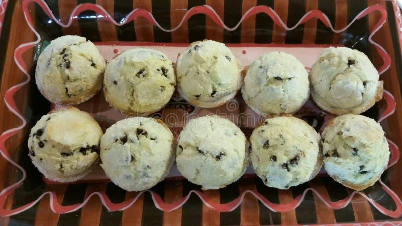 Chocolate Chip Muffins imagem de stock