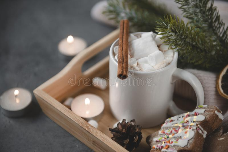 Chocolate cocoa with cinnamon and marshmallows, spruce branch, cookies, candles on a gray background royalty free stock photos