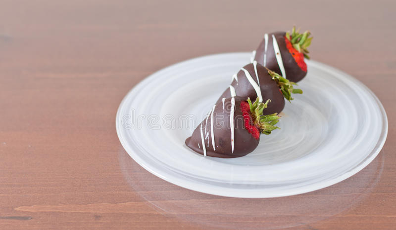 Chocolate Covered Strawberries. Three chocolate covered strawberries on a white plate served for dessert royalty free stock images