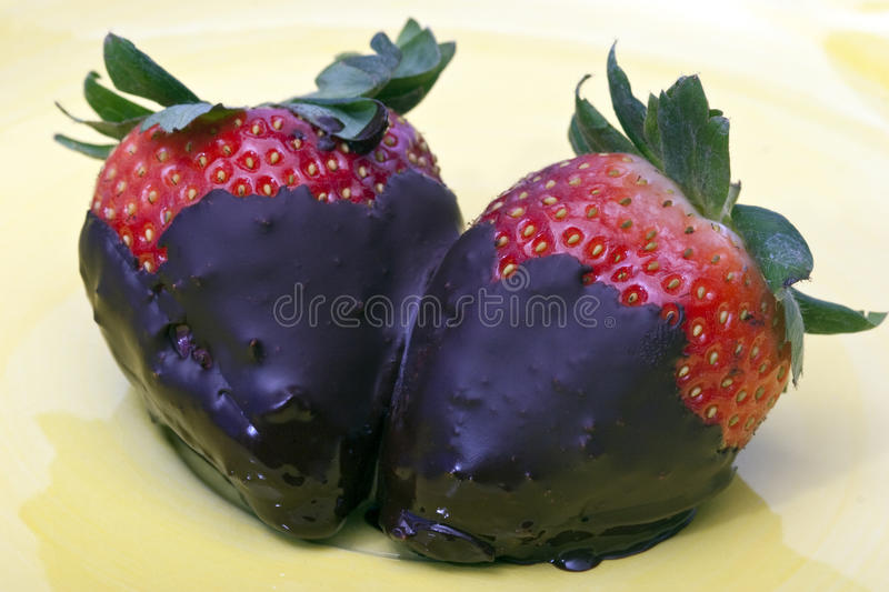 Chocolate covered strawberry. In studio setting royalty free stock photography