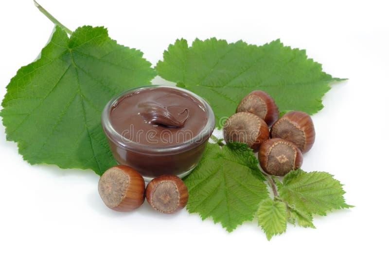 Chocolate Cream royalty free stock photography
