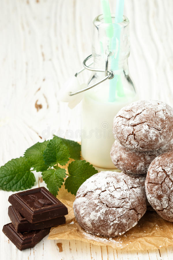 Chocolate Crinkles. cookies with powdered sugar. Selective focus royalty free stock photo