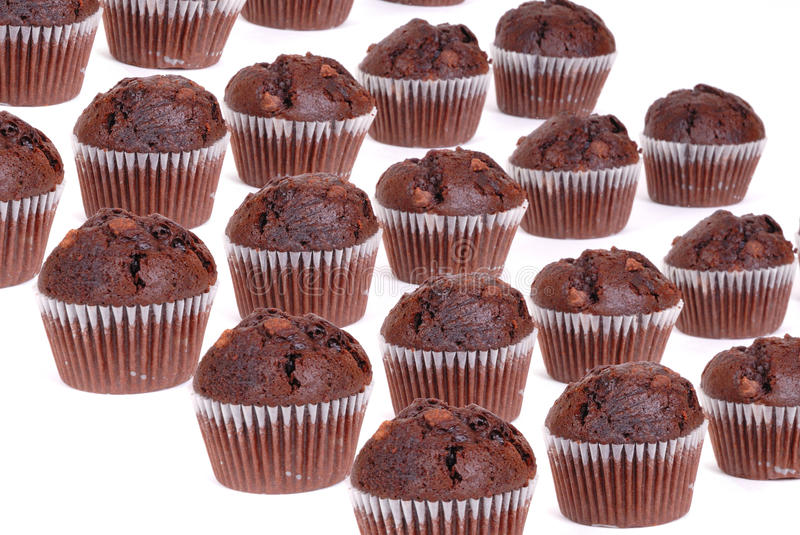 Chocolate cup cakes isolated group. Photograph of chocolate cup cakes isolated against white royalty free stock photos