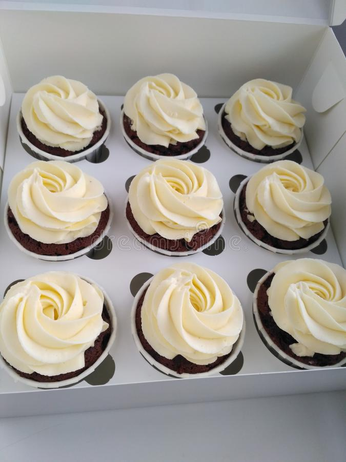 Chocolate cupcake with Carmel and white creamcheece royalty free stock images