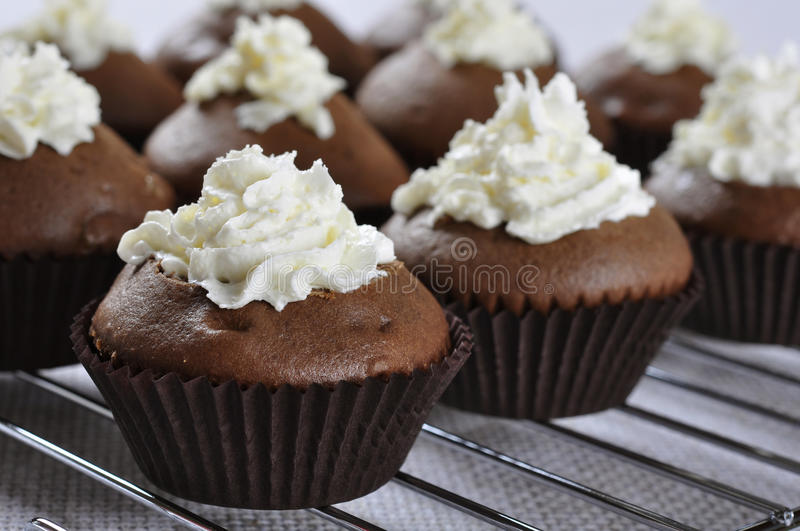 Download Chocolate cupcakes stock photo. Image of swirl, snack - 29168720
