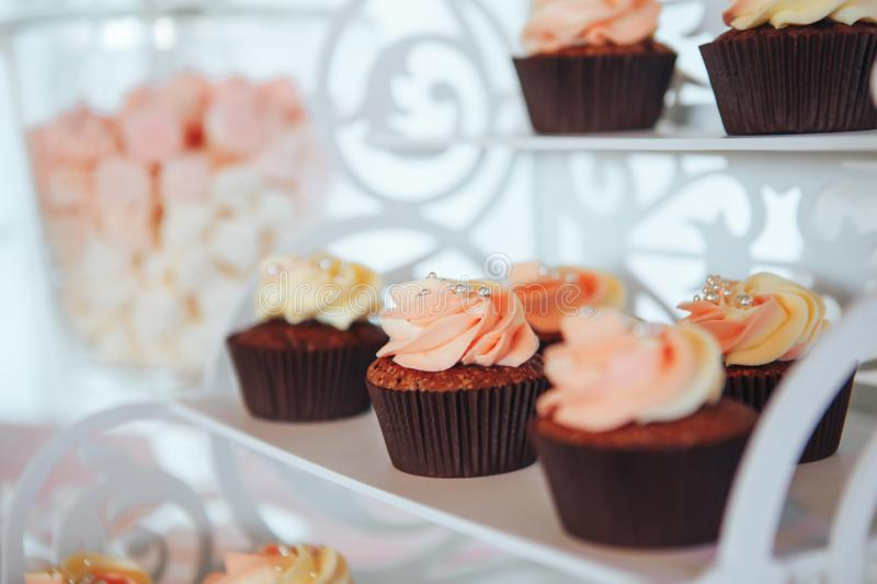 Chocolate Cupcakes. Candy bar with delicious mini cakes royalty free stock image