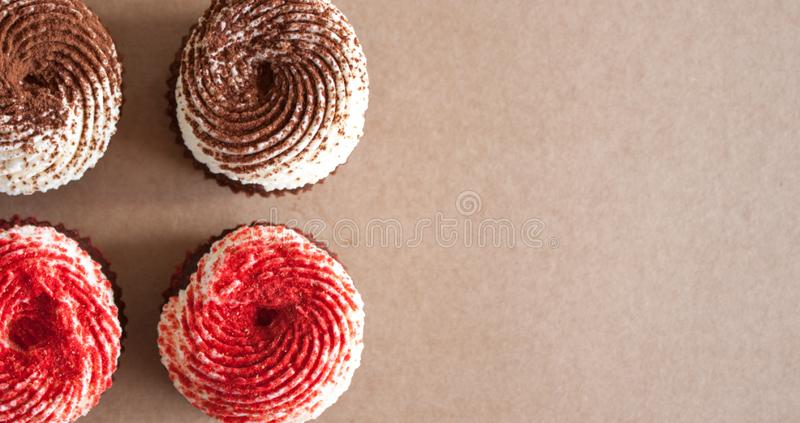 Chocolate cupcakes with cream cheese frosting royalty free stock photography