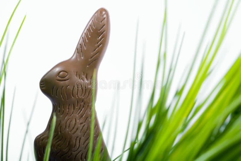 Chocolate de Easter imagem de stock