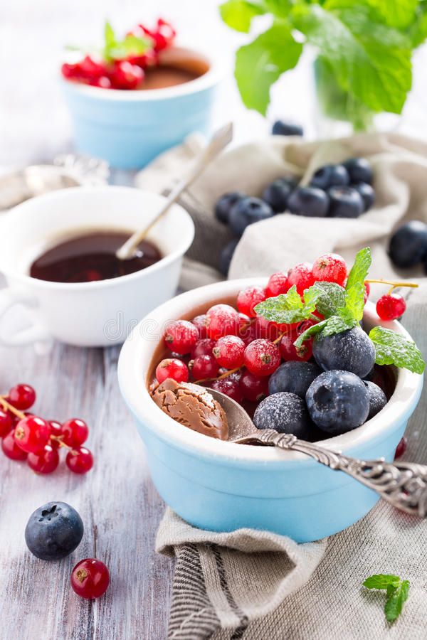 Chocolate dessert with berries. Delicious chocolate dessert with berries and mint served in ramekin stock images
