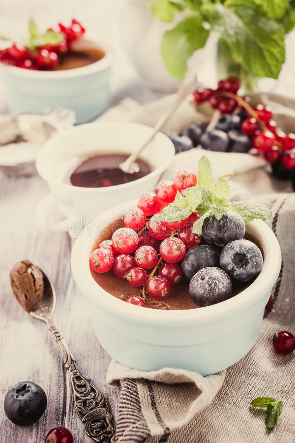 Chocolate dessert with berries. Delicious chocolate dessert with berries and mint served in ramekin. Retro style toned royalty free stock photography