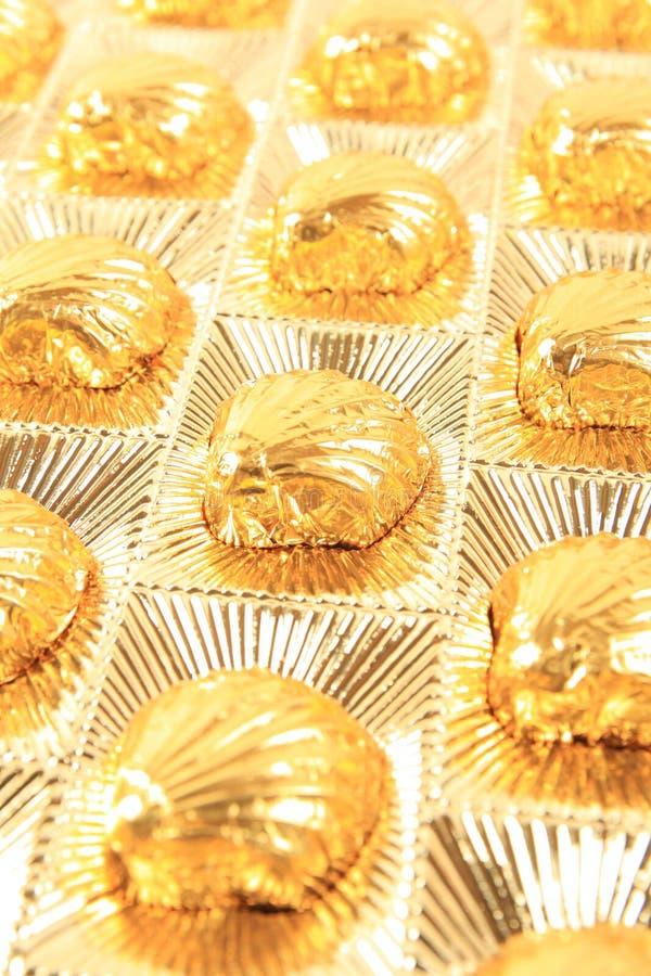 Chocolate do Scallop imagem de stock royalty free