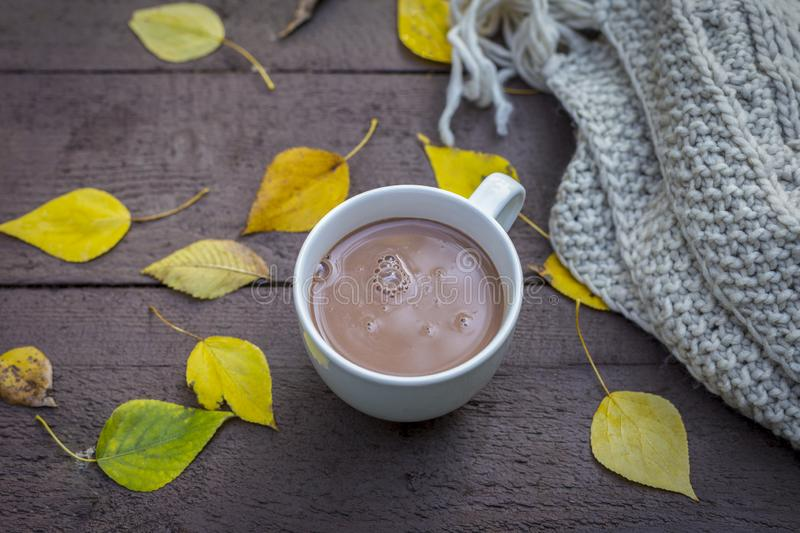 Chocolate drink in autumn park with yellow leaves and scarf near royalty free stock photos