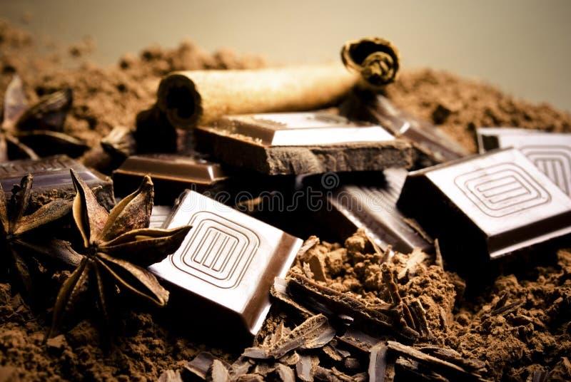 Chocolate e especiarias fotografia de stock royalty free