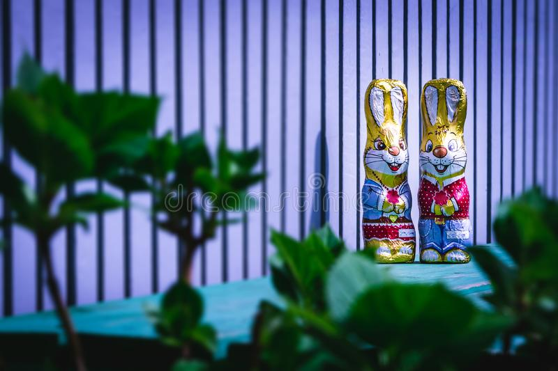 Chocolate easter bunny hiding on the balcony stock photo