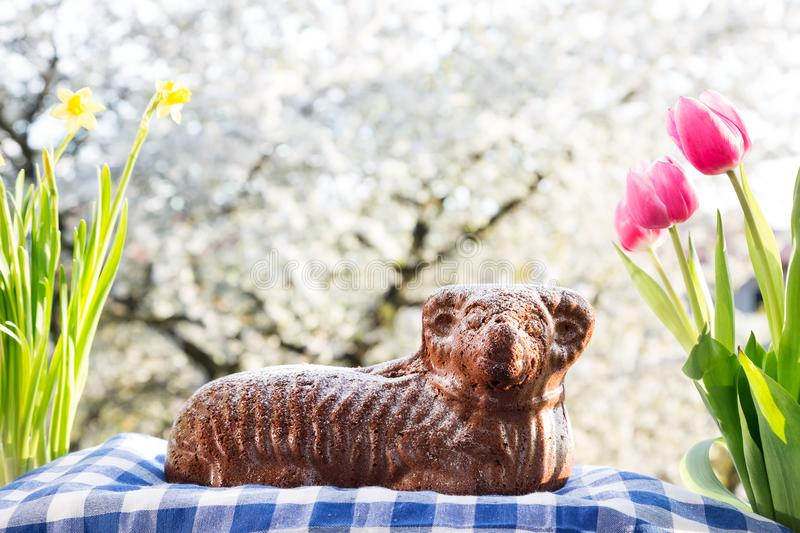 Chocolate easter lamb with spring decoration stock photo