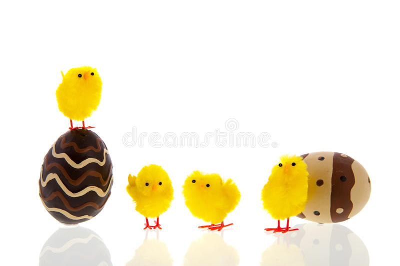 Chocolate Eggs With Chicks Royalty Free Stock Image