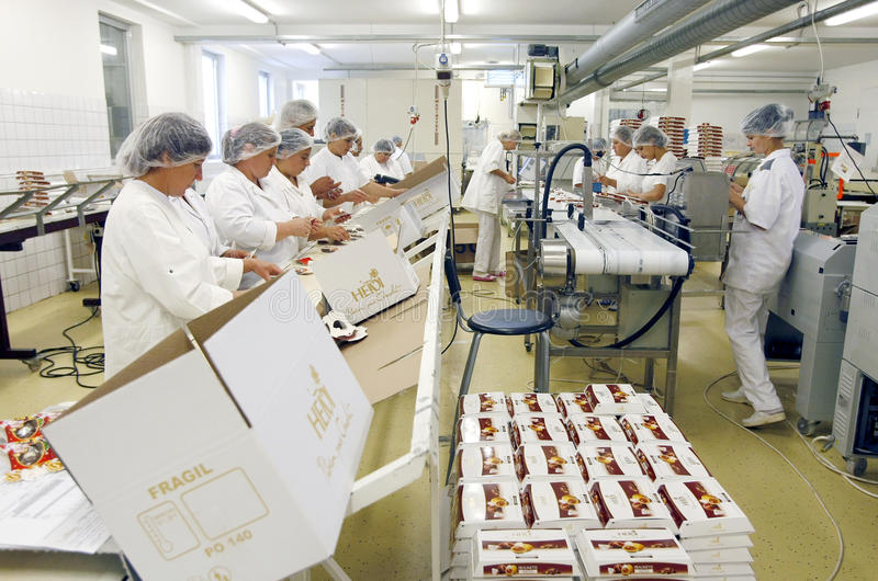 Chocolate factory employees stock photography